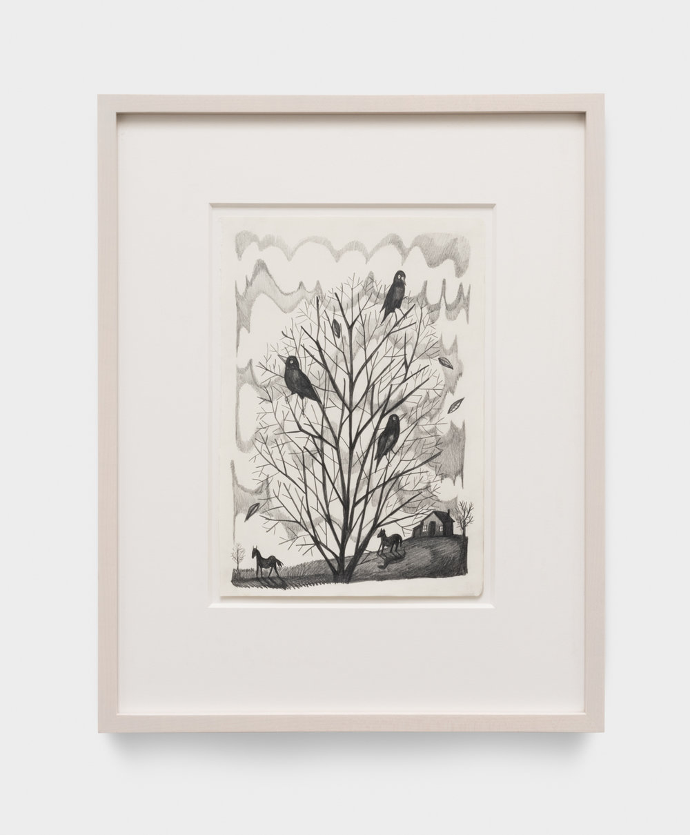 Nikki Maloof  Starlings  2017 Graphite on paper 11 ¾h x 8 ¼w in 19h x 15 ½w in framed NM025