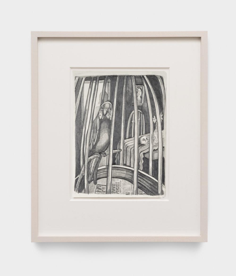 Nikki Maloof  Sad Birdcage  2017 Graphite on paper 11 ¾h x 8 ½w in 19 ½h x 15 ½w in framed NM024