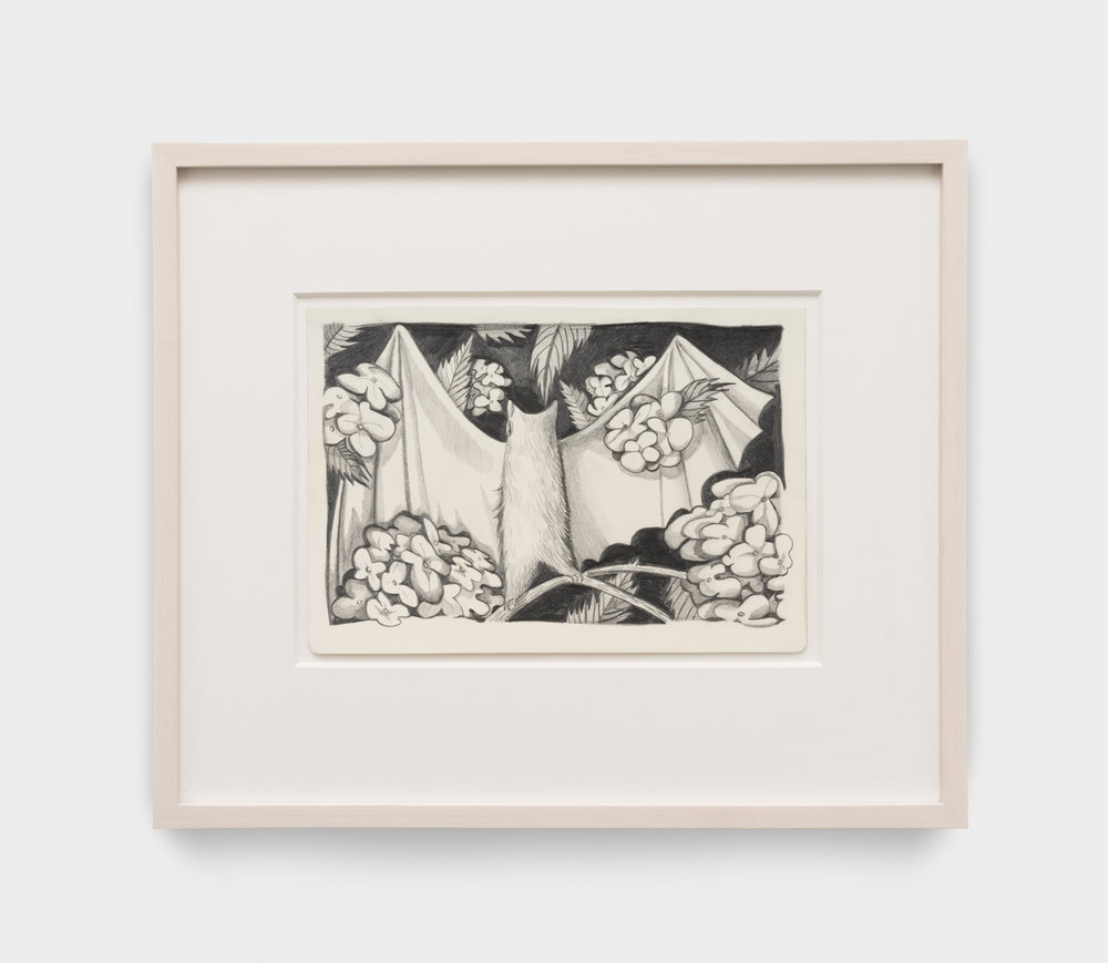 Nikki Maloof  White Bat and Hydrangeas  2018 Graphite on paper 11 ¾h x 8 ¼w in 16h x 19w in framed NM014