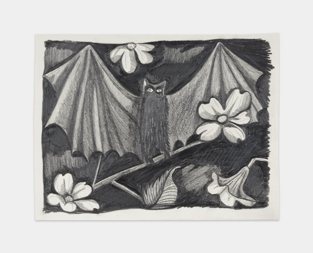 Nikki Maloof  Black Bat in a Dogwood Tree  2018 Graphite on paper 8 ½h x 11 ¾w in NM015