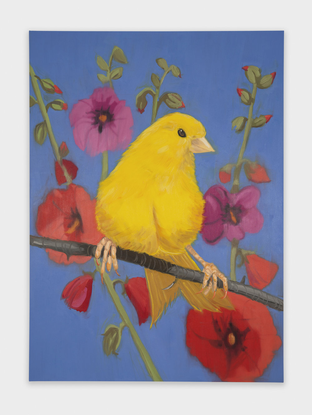 Ann Craven  Yello Fello Yello  2018 Oil on canvas 84h x 60w in AC167