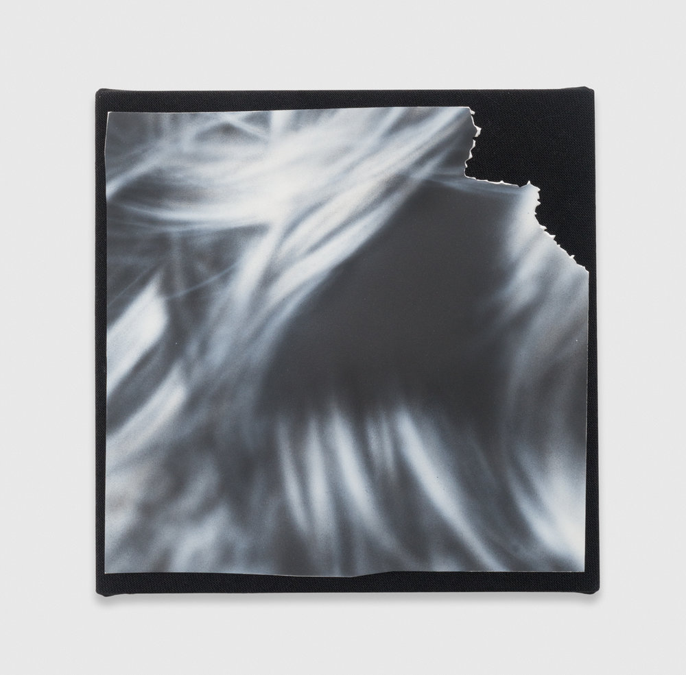 Kim Fisher  Magazine Painting (Hair)  2016 Oil on aluminum on dyed linen over panel 14h x 14w in KF026