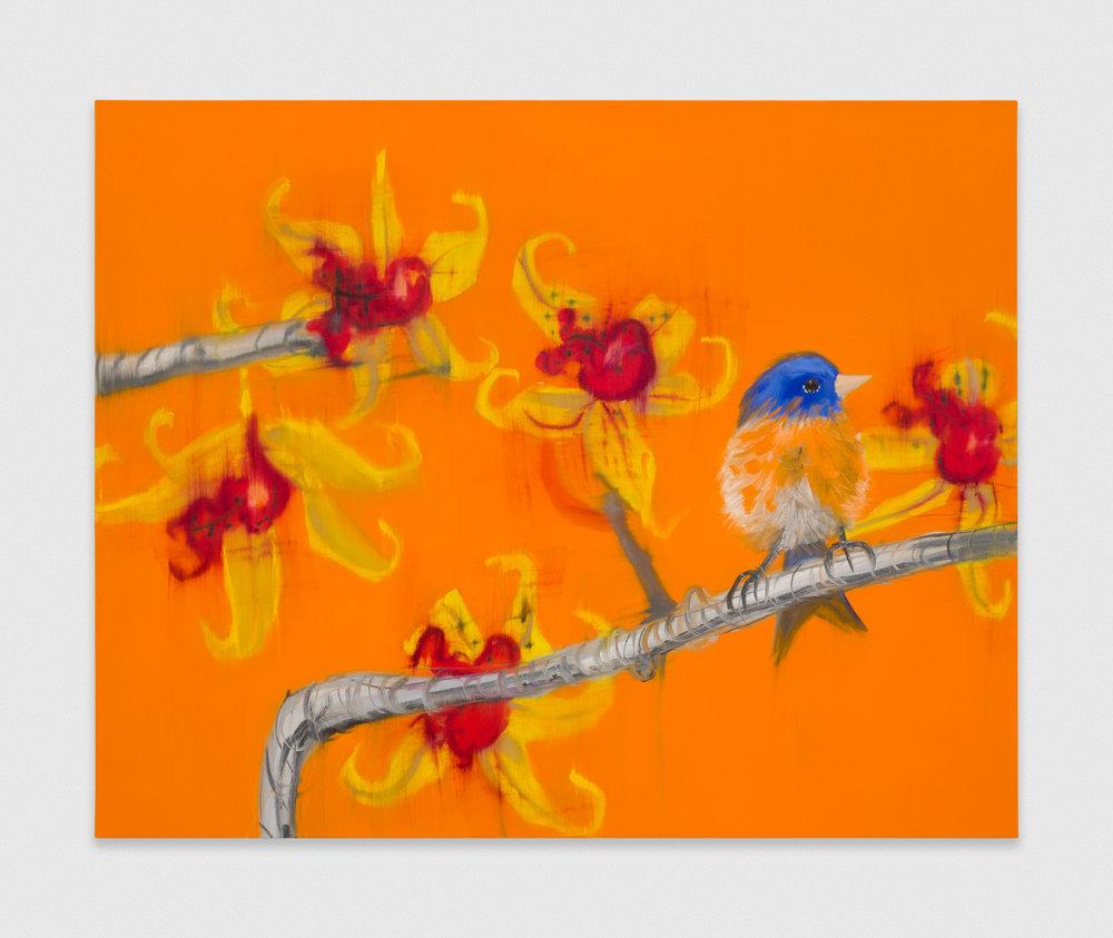 Ann Craven  Orange Horizontal Promise, 2019  2019 Oil on canvas 48h x 60w in AC191