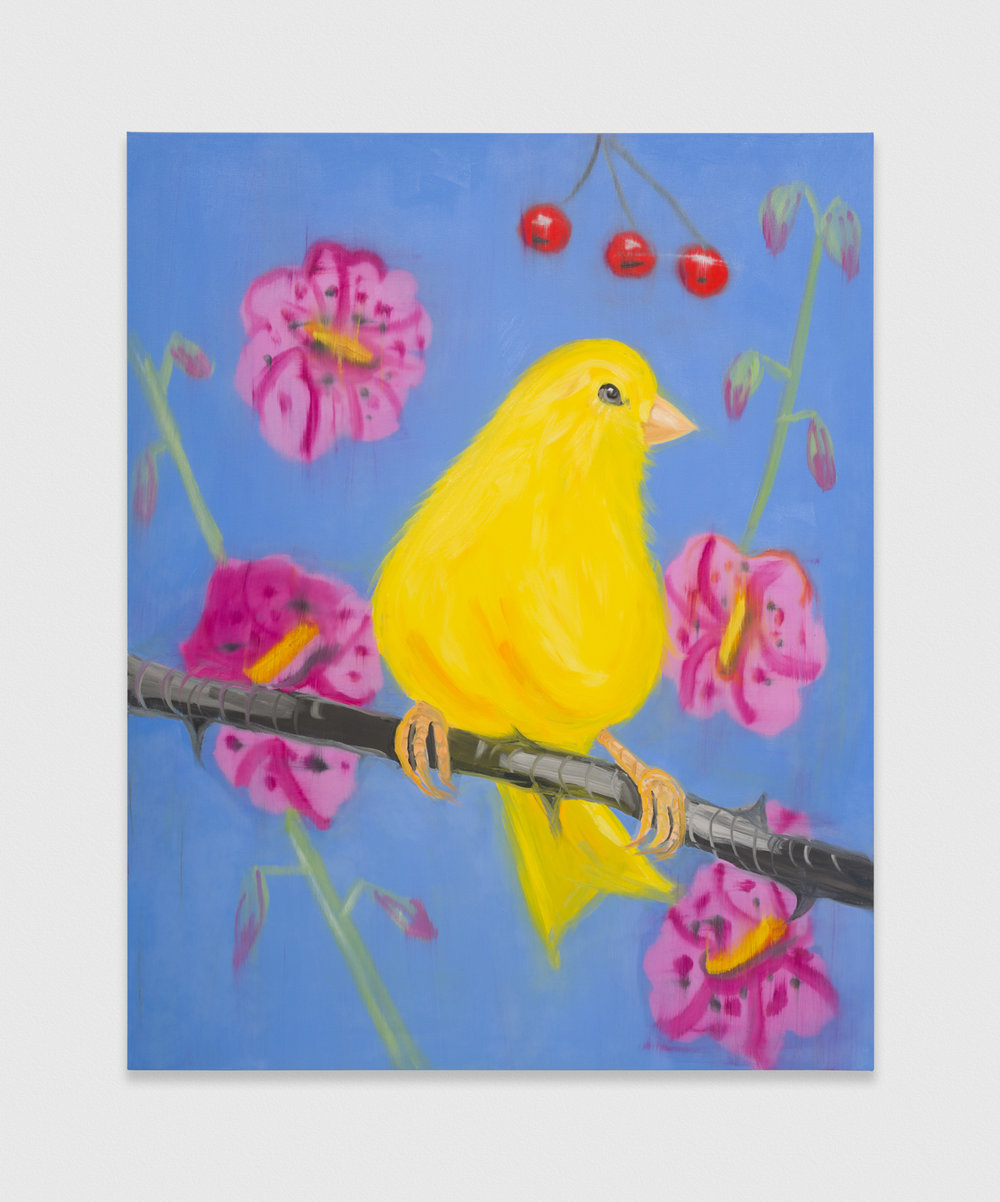 Ann Craven  Yello Fello (on Blue), 2019  2019 Oil on canvas 60h x 48w in AC199