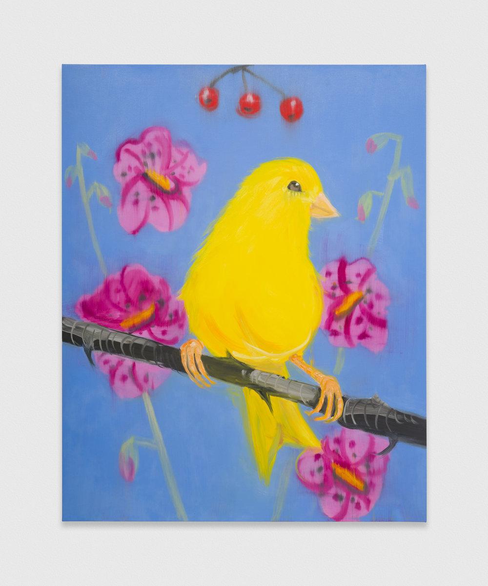 Ann Craven  Yello Fello (on Blue, Again), 2019  2019 Oil on canvas 60h x 48w in AC200