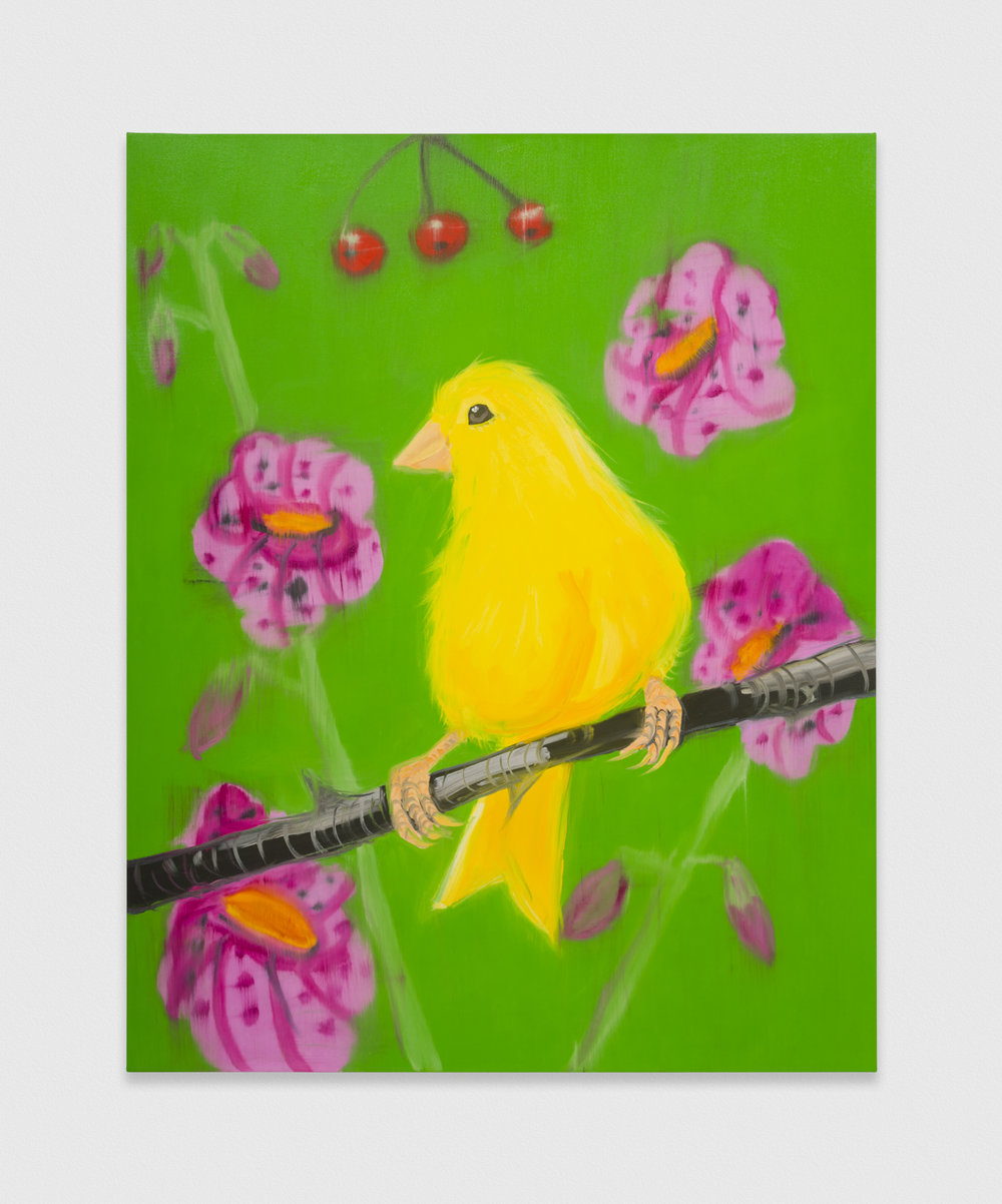 Ann Craven  Yello Fello (on Green), 2019  2019 Oil on canvas 60h x 48w in AC201