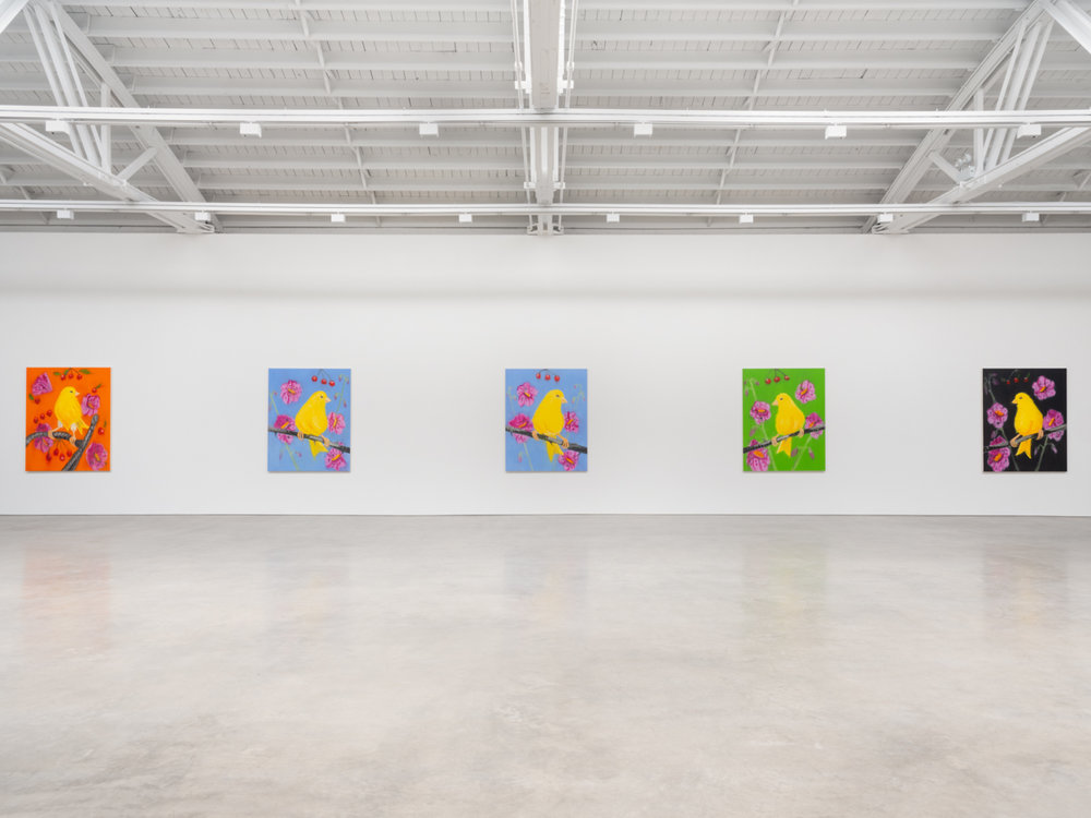 Ann Craven  Promise (Birds for Chicago), 2019  2019 Installation view Shane Campbell Gallery, South Loop