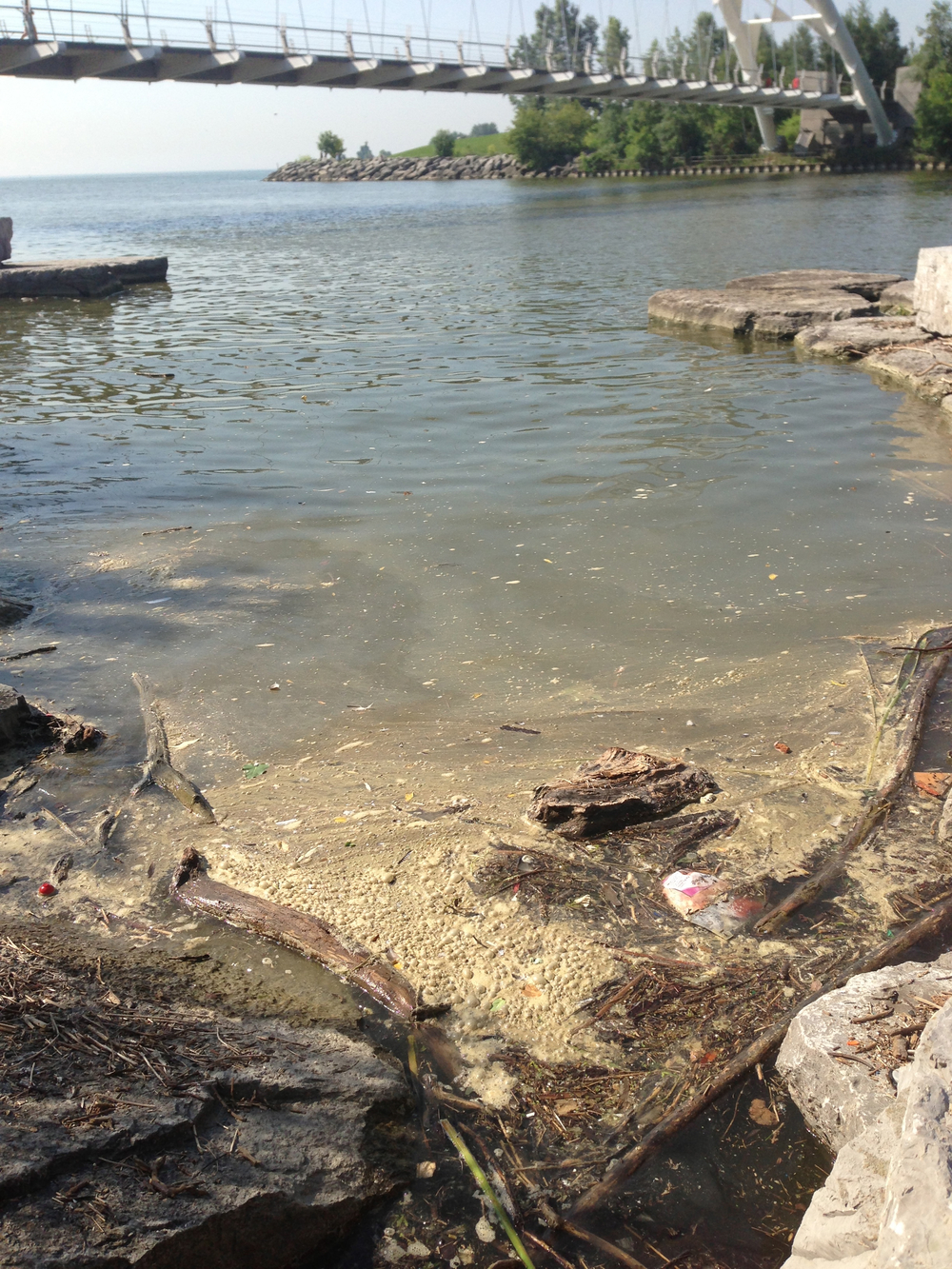 Sludge covers the shoreline of the Humber River one week after the 2013 storm. Photo by Krystyn Tully.