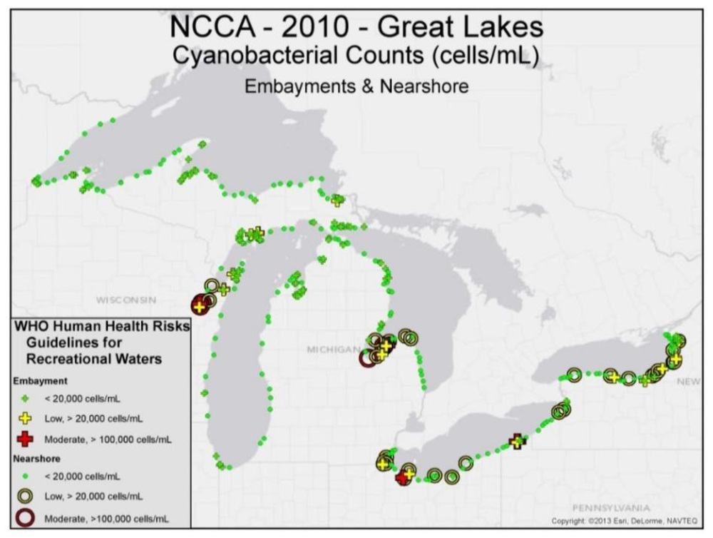 All the information in the EPA study – from Cyanobacteria counts to fish tissue data – is limited to the US side of the Great Lakes. (Map from the EPA's 2015 report / pg. 116)