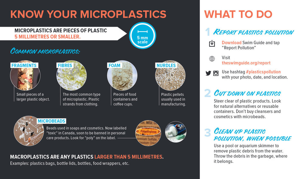 Microplastics can be found across waterways and on shorelines. To help simplify this macro problem, here are the 5 major types of microplastics. (Image via Lake Ontario Waterkeeper)