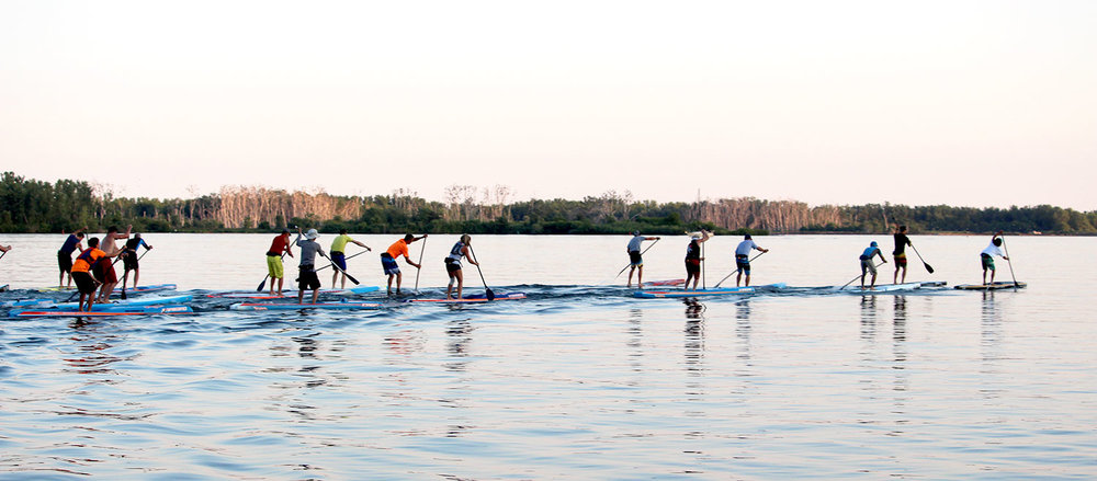 2015 Canada Cup SUP Race. (Photo by: Lake Ontario Waterkeeper)