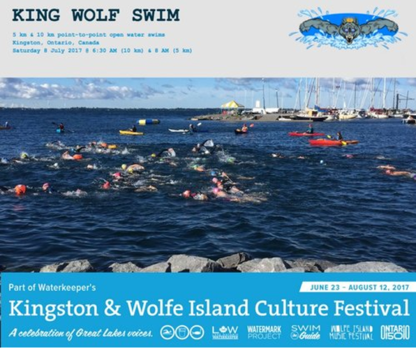 2017-king-wolf-swim_36587386345_o.png