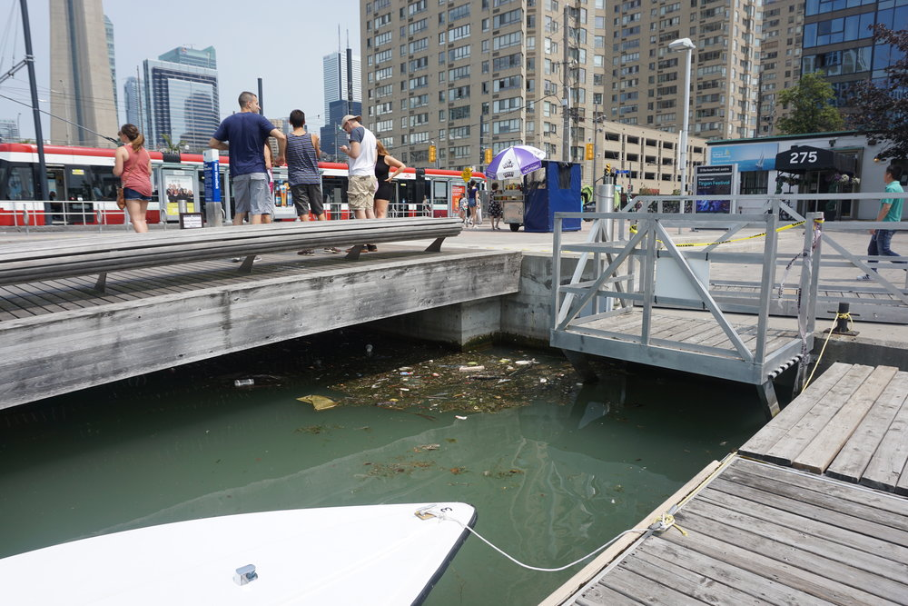 The aesthetics of Toronto's waterfront is supposedly fine. Waterkeeper disagrees with this assessment. Above is a common sight in the Inner Harbour (July 21, 2017, Rees St. Slip).