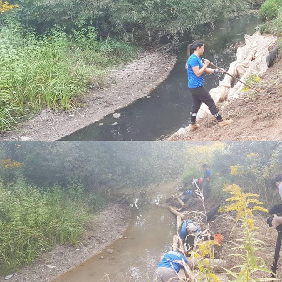 fletcher's+creek.jpg