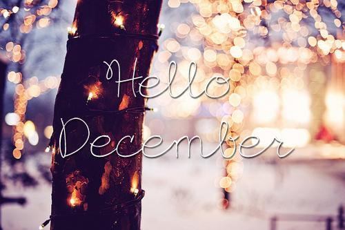 Goodbye November Hello December 2015 The Lighthearted Life
