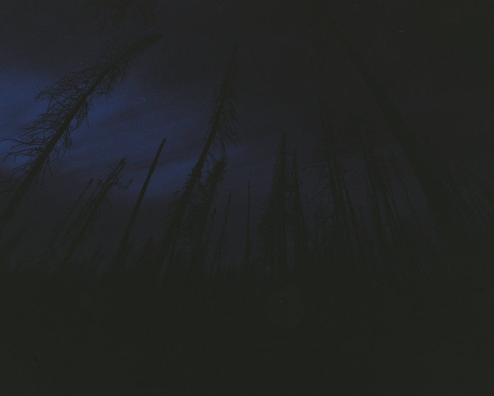 3530tri160826-R5-E002ryantrimble2.jpg