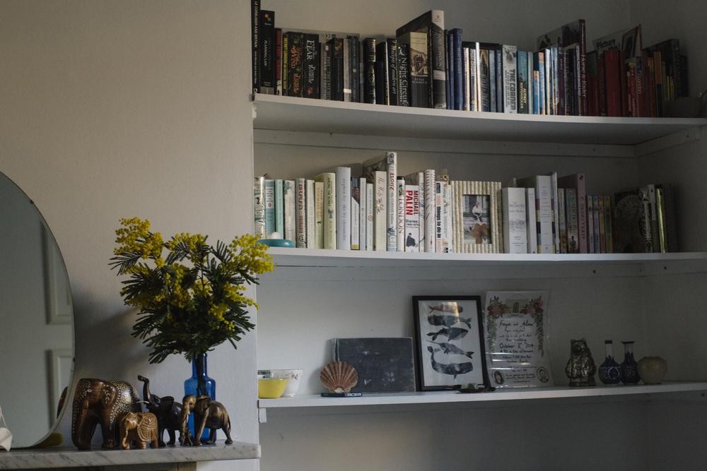 Colour-coded book shelf