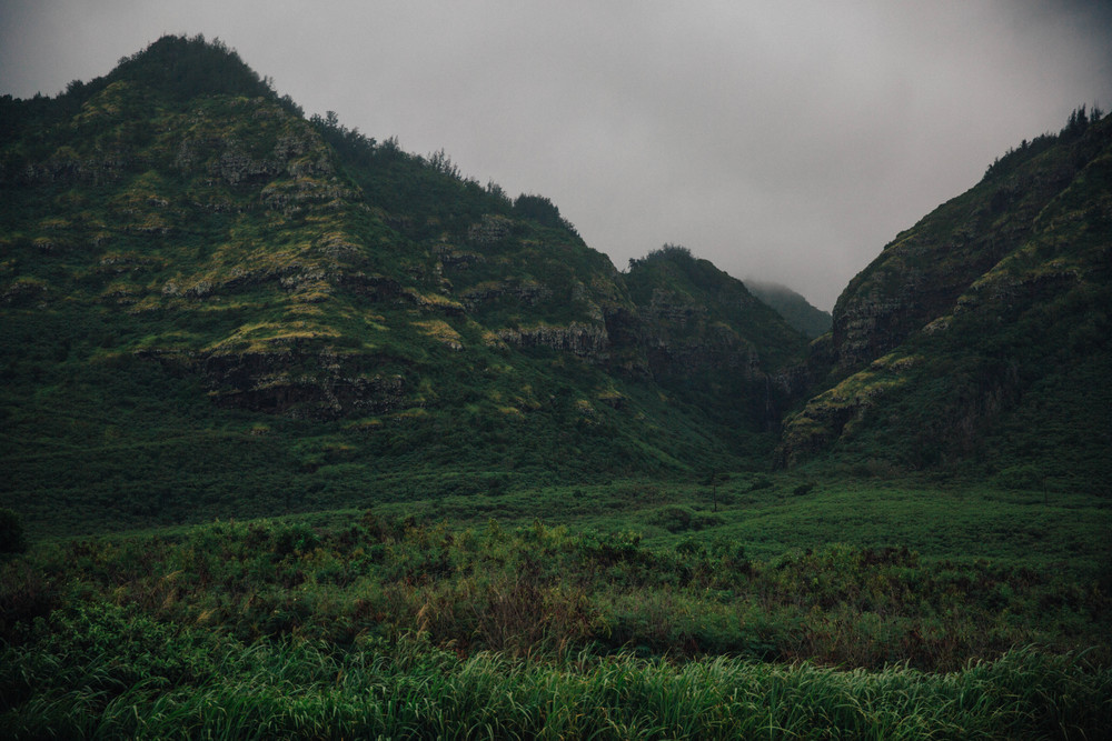 Hawaiian mountains in the mist.