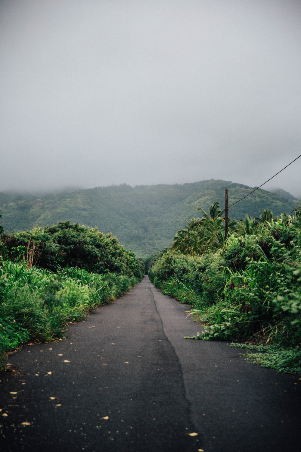 Road to somewhere, Hawaii
