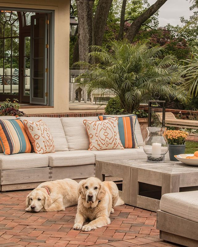 Dog days of summer 🧡💛 Love this pic taken on the morning of the 2018 @darienhousetour by @landinophoto 🐕🐕 #mediterraneandesign #goldens #rinfretltd #outdoorstyle #darienhousetour