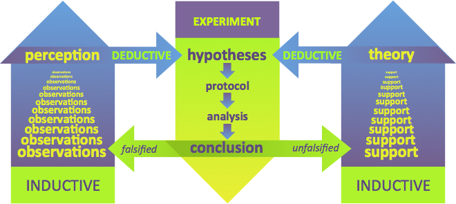 Figure 1.   Deductive and inductive reasoning in the scientific method . Making sense of the natural world begins with observations. Left) As we collect observations of the world, we can begin to make general predictions (or perceptions) regarding phenomena. This process is known as inductive reasoning, making general predictions from specific phenomena. From these generalized perceptions of reality, specific predictions can be deduced using logic, generating hypotheses. Middle) Experimentation allows researchers to test the predictions of the hypotheses. If a hypothesis is falsified, that is another observation which adds to our general perception of reality. Right) As more and more similar but different experiments reinforce a specific prediction, growing support emerges for the development of a scientific theory, another example of inductive reasoning. In turn, a theory can assist in the development of additional, untested hypotheses using deductive reasoning.