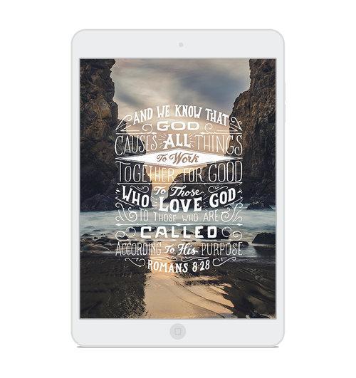 Romans 8:28 — Scripture Type