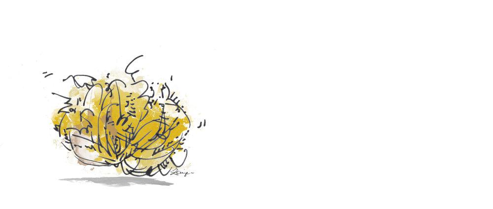 tumbleweed-SIWS.jpg