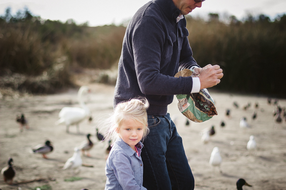 {Week 7:52} February 9th || Feeding the birds - Lake Carneros, Santa Barbara