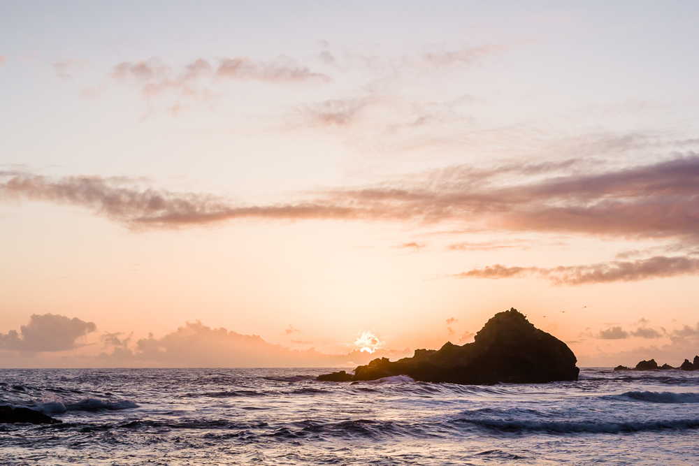 KellySwedaPhotography.Big_Sur_Springbreak_Roadtrip-4835.jpg