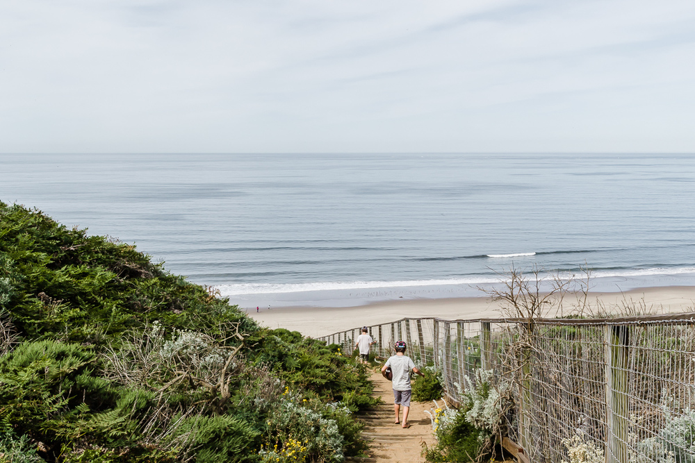 KellySwedaPhotography.Big_Sur_Springbreak_Roadtrip-4997.jpg