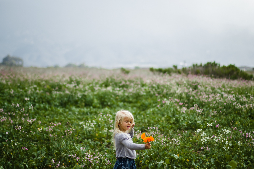 Francesca Sweda, 4 and springtime flowers || Carpinteria Bluffs Trail