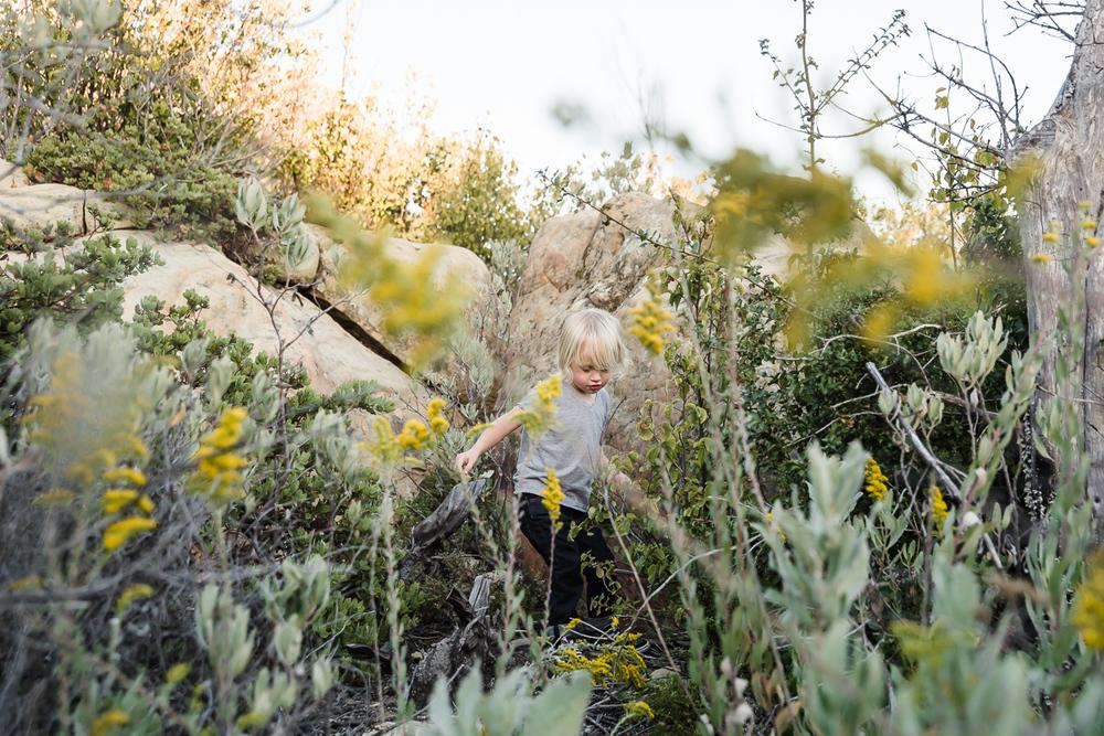 KellySwedaPhotography.Lipscomb_web-8560.jpg