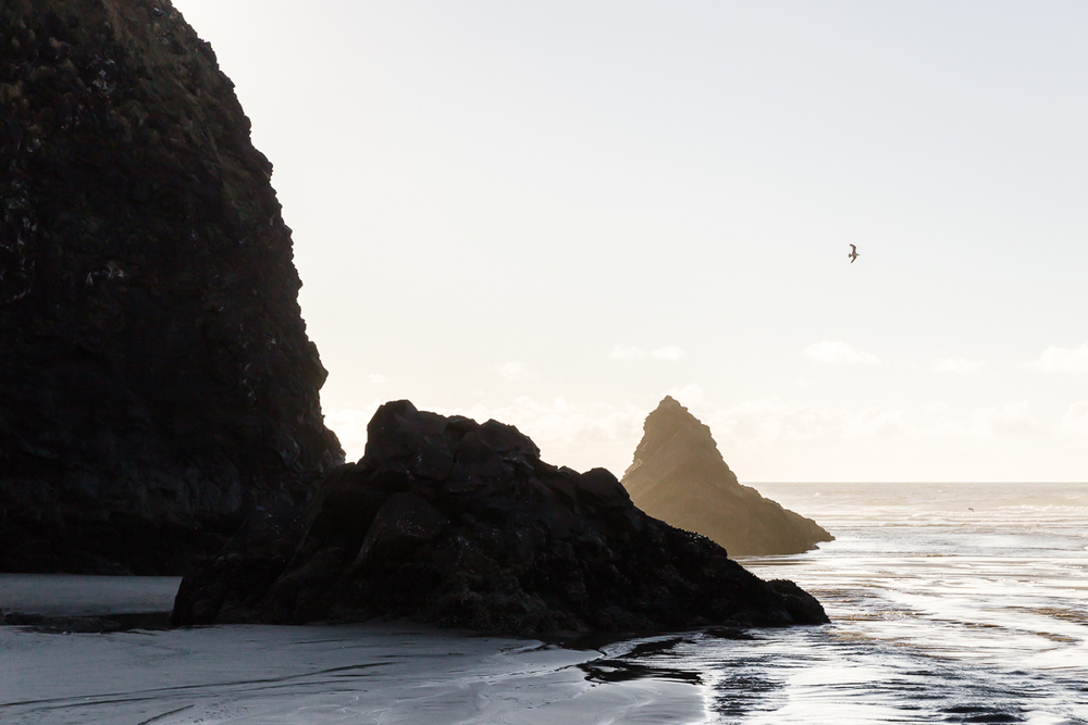 KellySwedaPhotography.Oregon_Coast-7779.jpg
