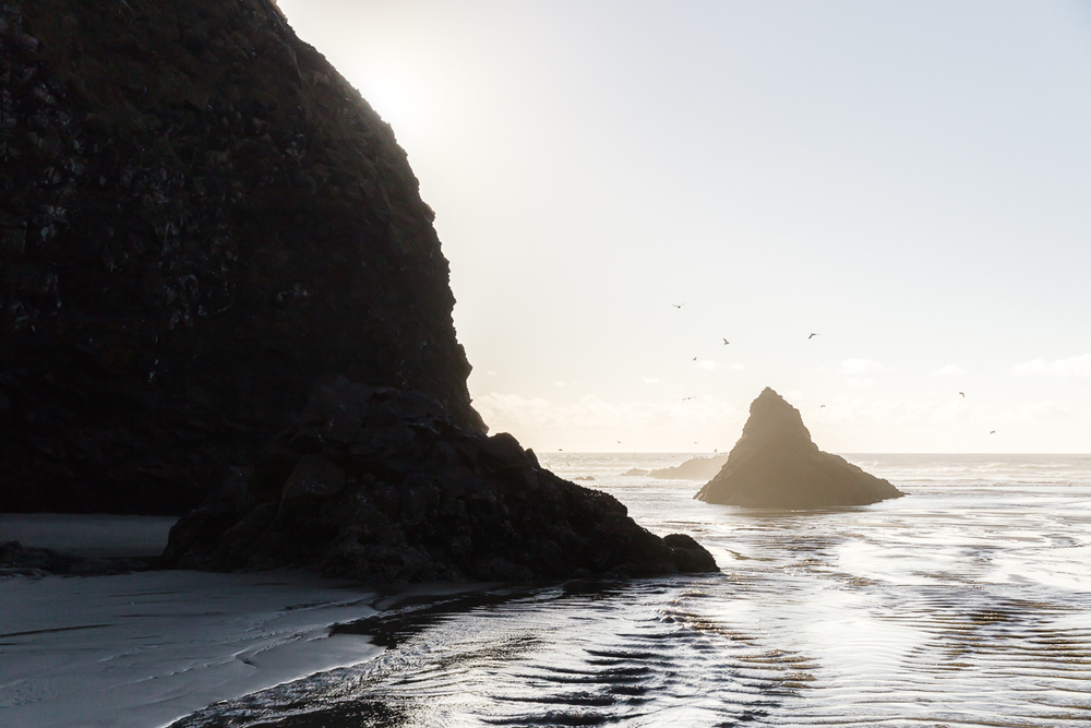 KellySwedaPhotography.Oregon_Coast-7783.jpg