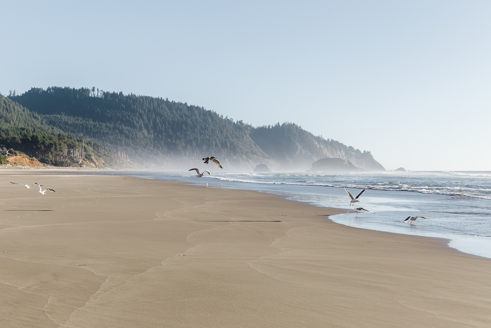 KellySwedaPhotography.Oregon_Coast-7790.jpg