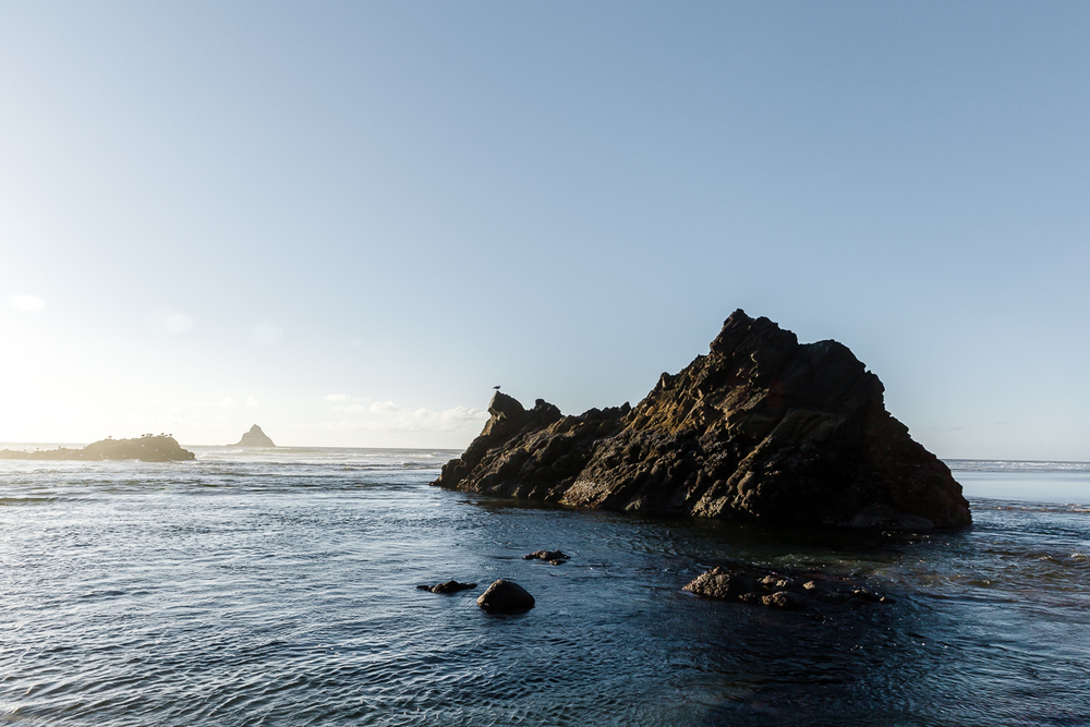 KellySwedaPhotography.Oregon_Coast-7812.jpg