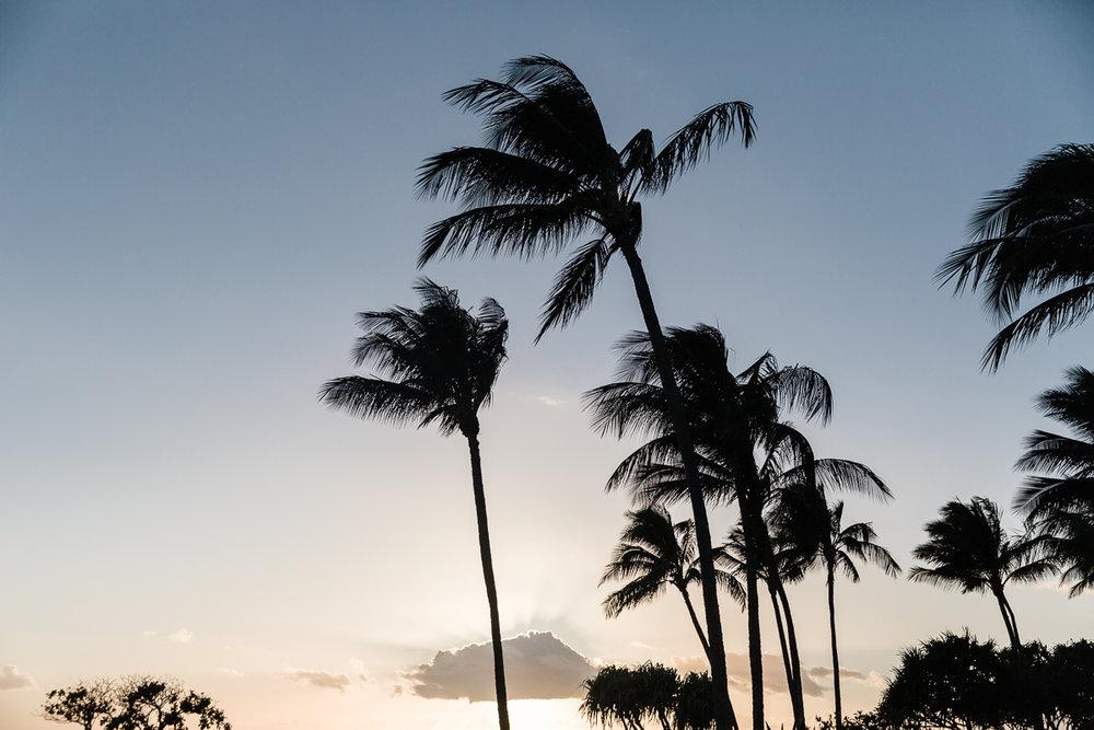 KellySwedaPhotography.Hawaii_web-5847.jpg
