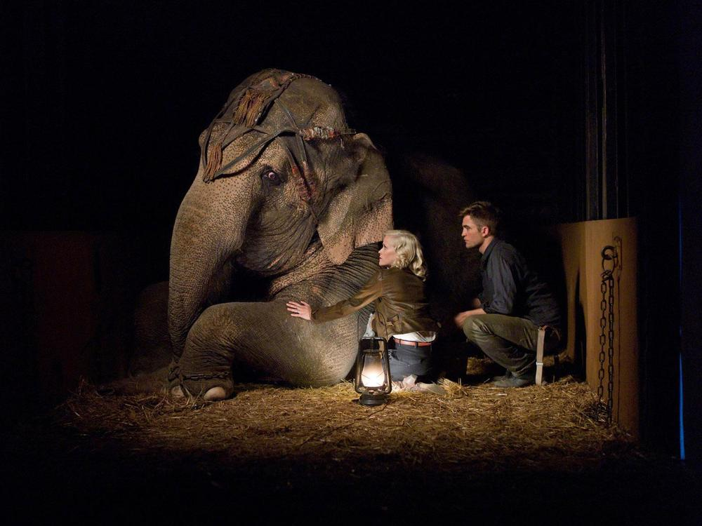 Production still of  Water For Elephants  via  Google .