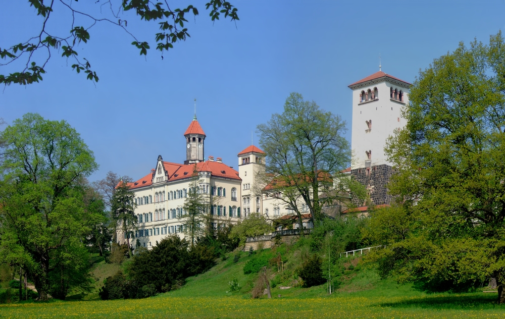 Castle Waldenburg was the film location for the interiors of Madame D.'s estate. Image via Google.
