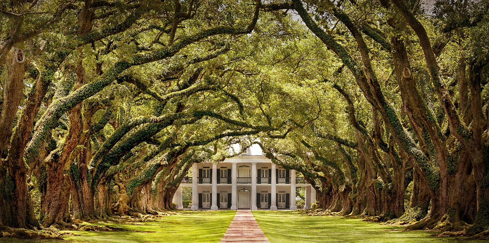 Photo of Oak Alley Plantation via  Google .