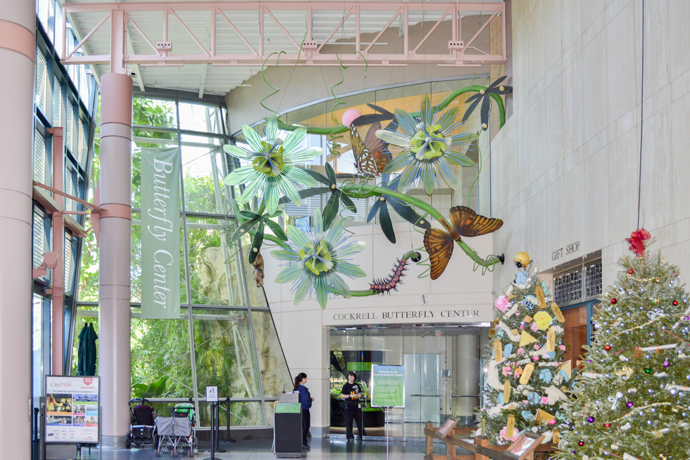 The entrance of the Cockerel Butterfly Center at the Houston Museum of Natural Science, where Boyhood was filmed. (Image via  Google .)