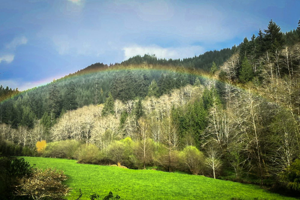 A pretty rainbow above one of the fields of Deadwood Ranch & Lodge.