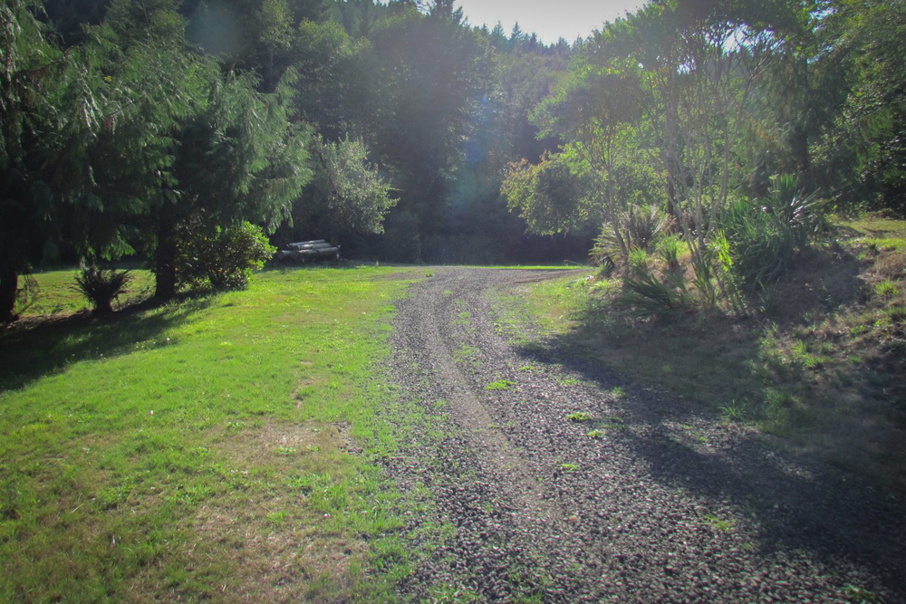 The road to the orchard on Deadwood Ranch.