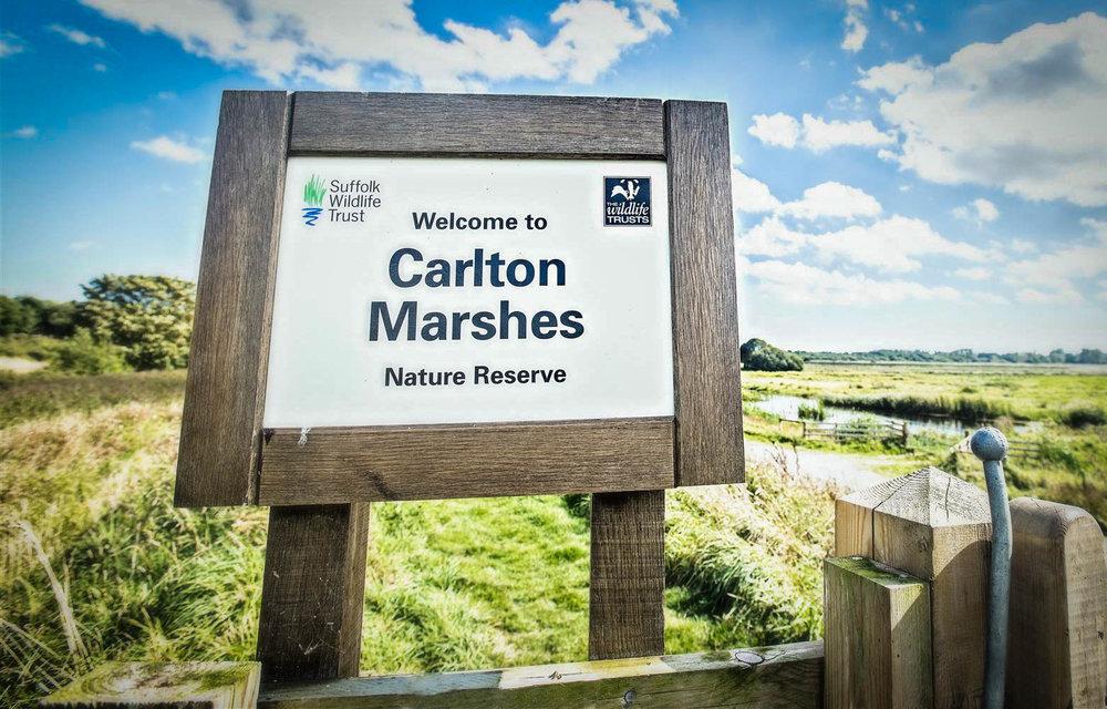 carltonmarshes-31.jpg