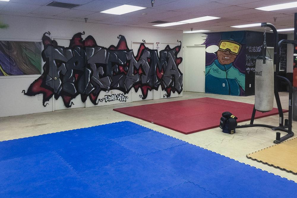 mma-gym-2.jpg