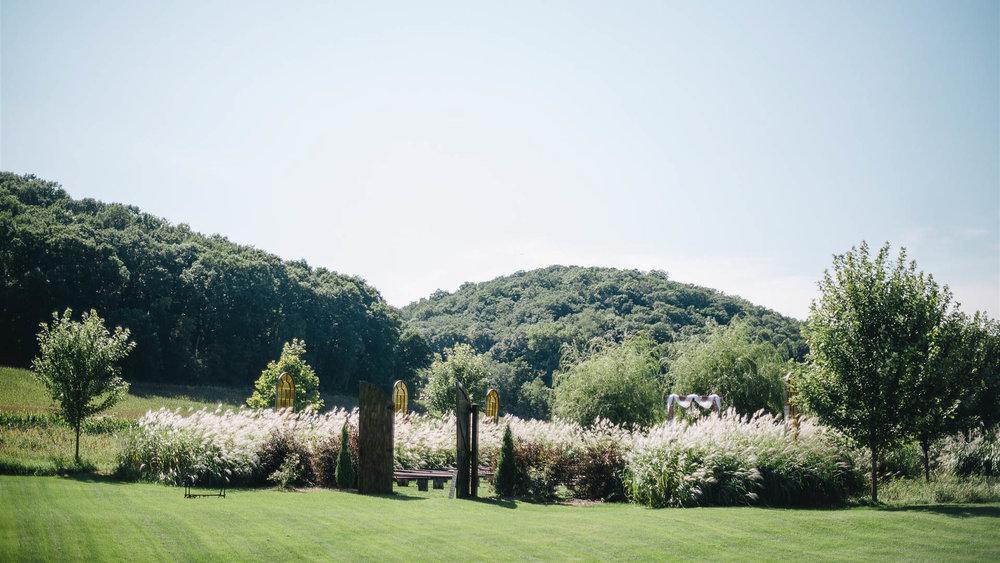 meadow-11.jpg