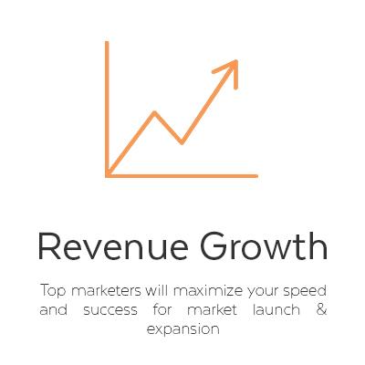 1 Revenue growth.jpg