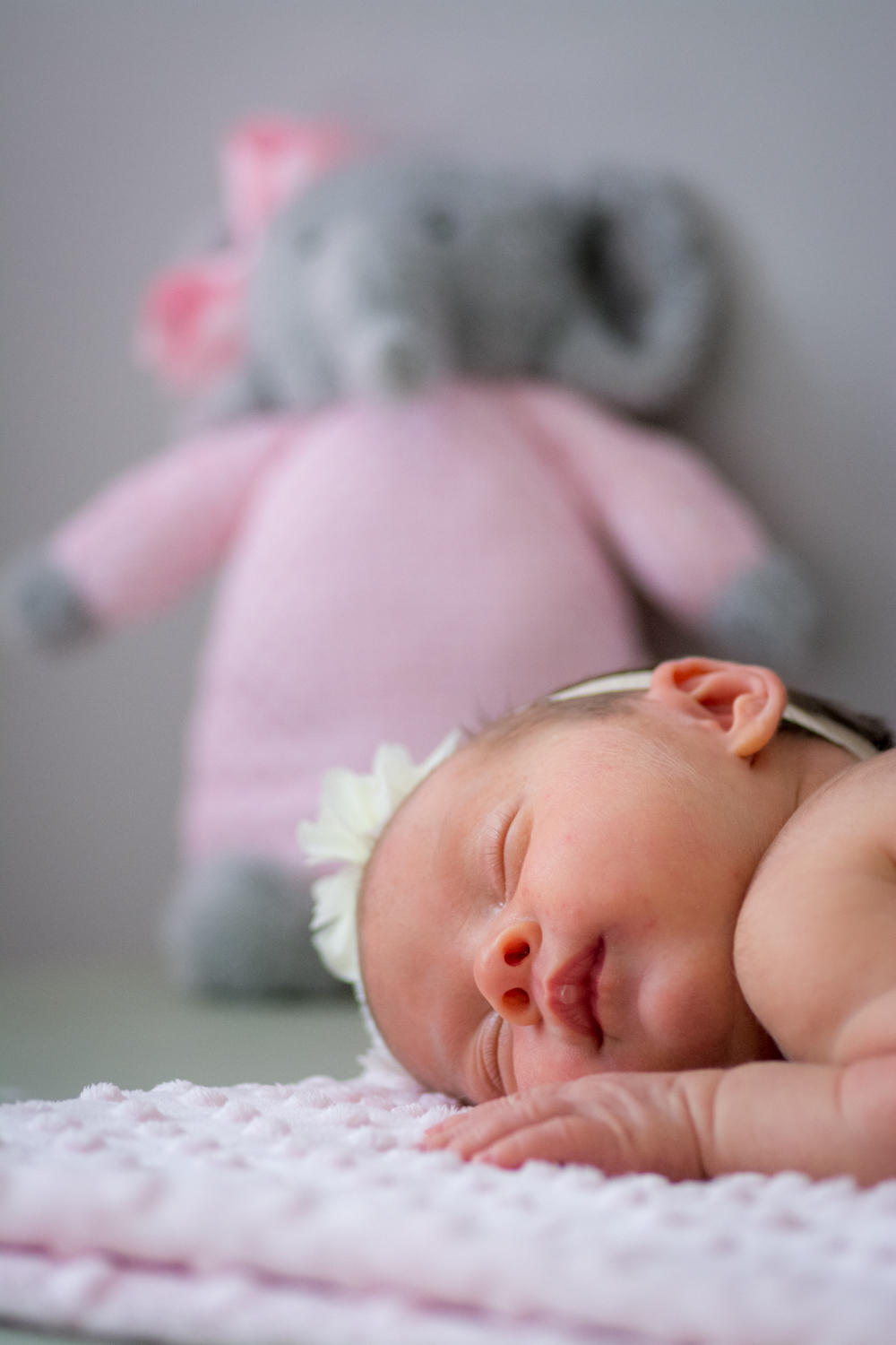 life by pictures photography blog family newborn session 3.jpg