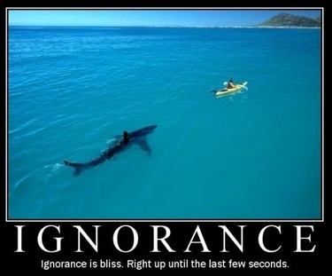 Ignorance is bliss- until final seconds.jpeg