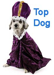 Top Dog- crown.jpg